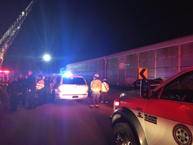 аварія, потяг, поїзд, сша