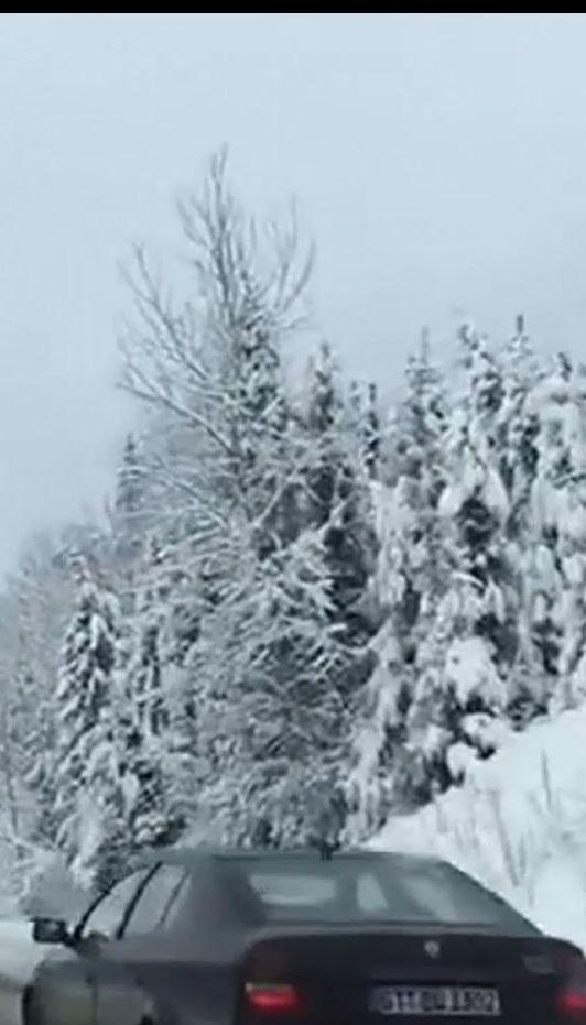 Західну Україну засипало снігом