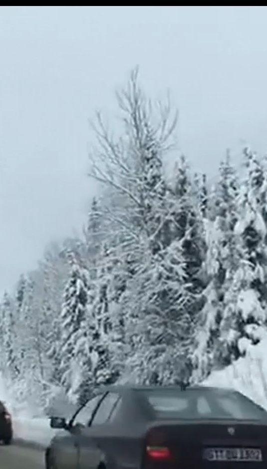 Западную Украину засыпало снегом