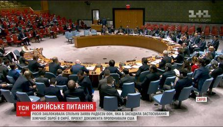 Россия заблокировала совместное заявление Совбеза ООН, осуждающее применение химического оружия в Сирии