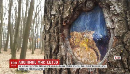 На нескольких деревьях во Львове появились мини-рисунки зверей, птиц и рыб