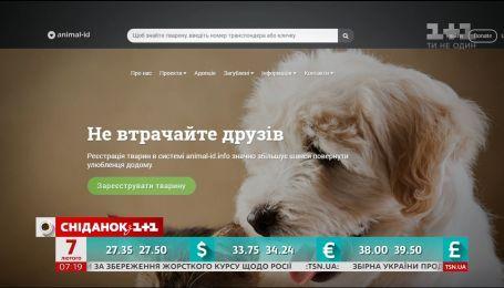 Зачем чипировать животных, и как к этому относятся украинцы