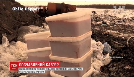 """В """"ЛНР"""" показательно раздавили бульдозером 85 килограммов красной икры"""