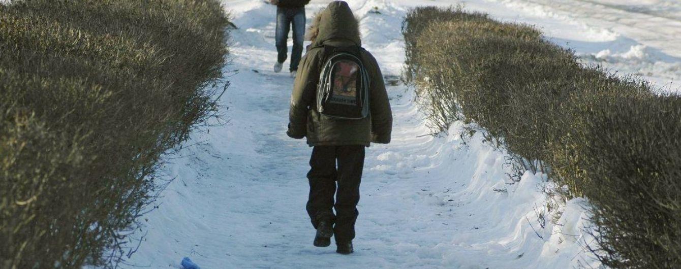 В Николаеве из-за непогоды приостановили обучение в школах