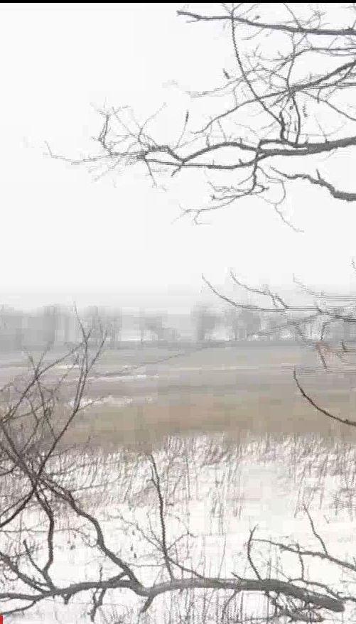 В годовщину подписания Минских соглашений враг не стесняется палить с запрещенного оружия