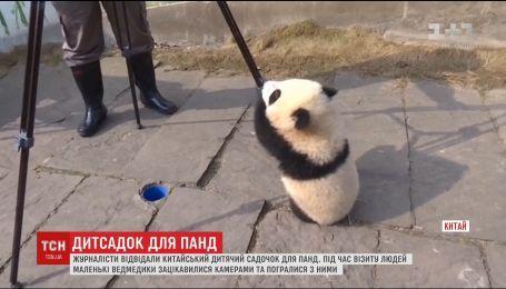 Китайским журналистам разрешили посетить детский сад для панд