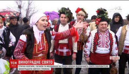 Этнические болгары, гагаузы и молдаване начали сезон обрезание лозы