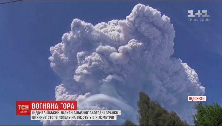 На индонезийском острове активизировался вулкан Синабунг