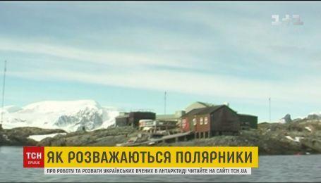 Поездка украинских ученых в Антарктиду сорвалась из-за жалоб