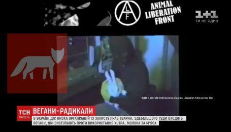 Вегани-радикали: у світі почастішали агресивні напади зоозахисників
