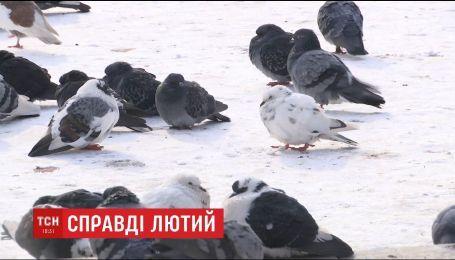 В Украине прогнозируют самую холодную ночь за всю зиму