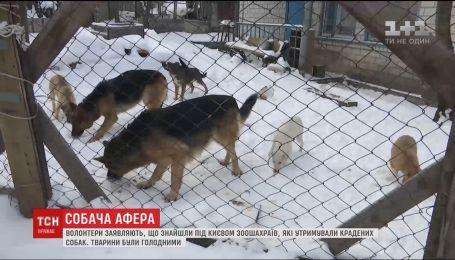 Волонтери заявили, що знайшли під Києвом двір крадіїв собак