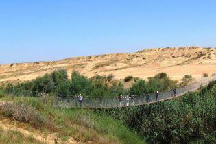 """""""Райський сад"""" серед пісків та унікальна виноробня: чому варто відвідати пустелю Негев"""
