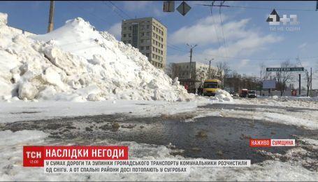 За три волны снегопадов в Сумах выпало около 40 сантиметров снега