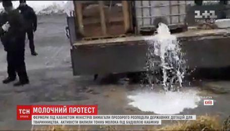 Фермеры вылили под здание Кабмина тонну молока, требуя прозрачного распределения дотаций