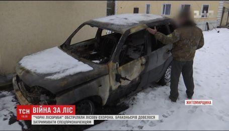 На Житомирщині чорні лісоруби влаштували терор лісникам та чинили опір поліції