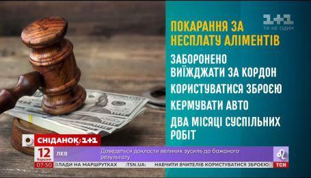 Начальник Главного территориального управления юстиции в г. Киеве рассказал, как работает Закон об алиментах