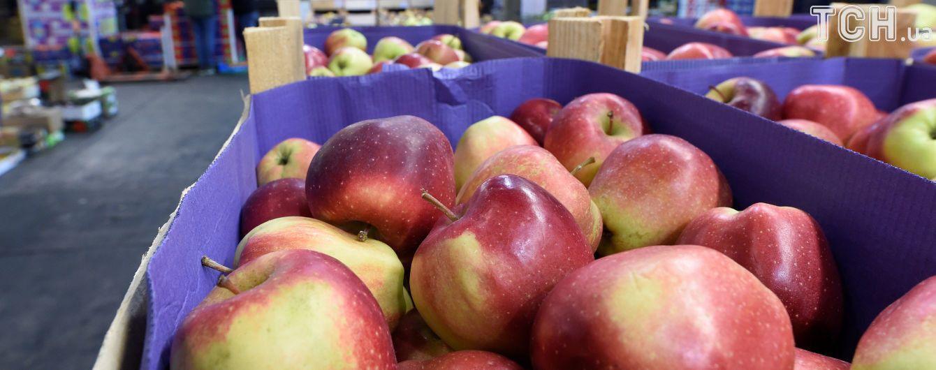 Дешевые фрукты и дорогой хлеб: как нынешняя погода повлияет на изменения ценников в Украине