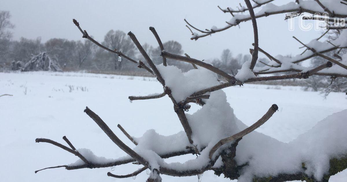 Штрафи за відсутність маски, ресторатори без штанів та сніг на вихідних: головне на ТСН.ua за 20 листопада