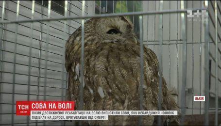 У Львові випустили птаха, якого від смерті врятував небайдужий чоловік