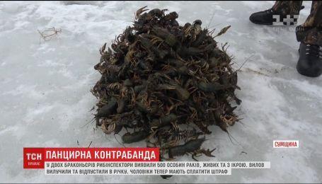 На Сумщине браконьеры выловили полтысячи раков из водоема