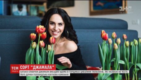 Голландська квіткова компанія назвала сорт тюльпанів на честь Джамали