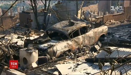 Австралию охватили масштабные лесные пожары
