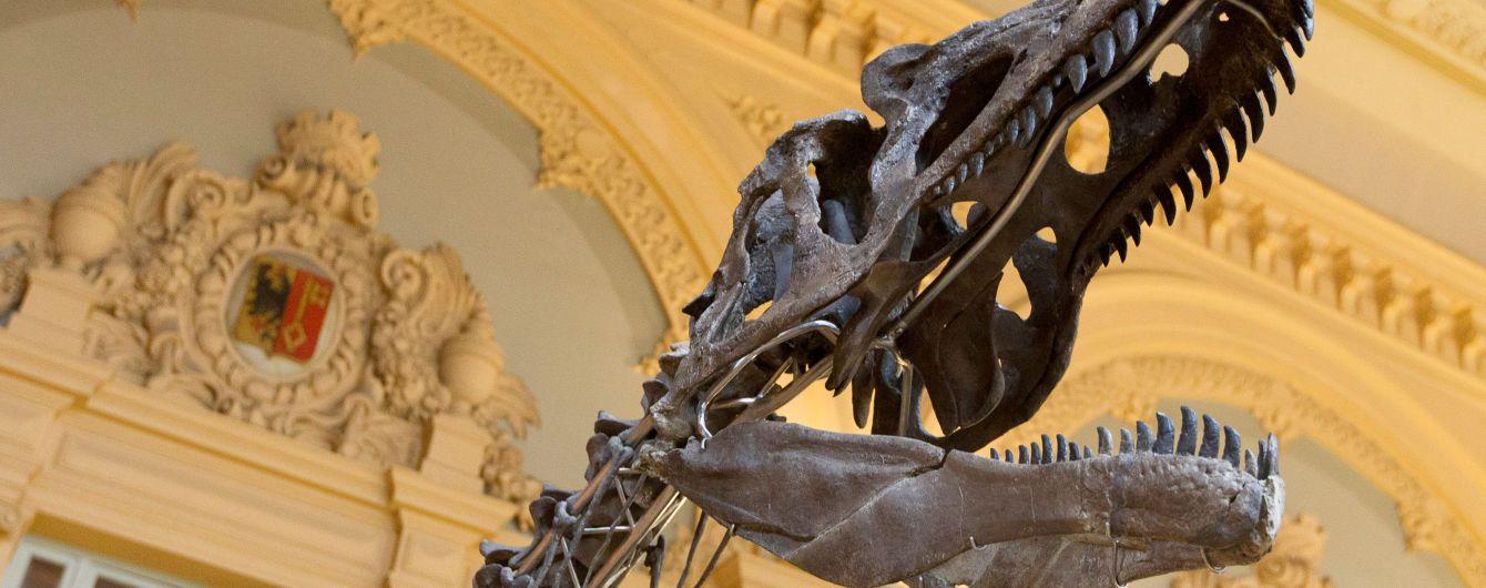 Удивительное открытие меняет взгляд на историю: ученые нашли неизвестного ранее динозавра-гиганта