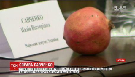 Савченко принесла в Регламентный комитет гранаты