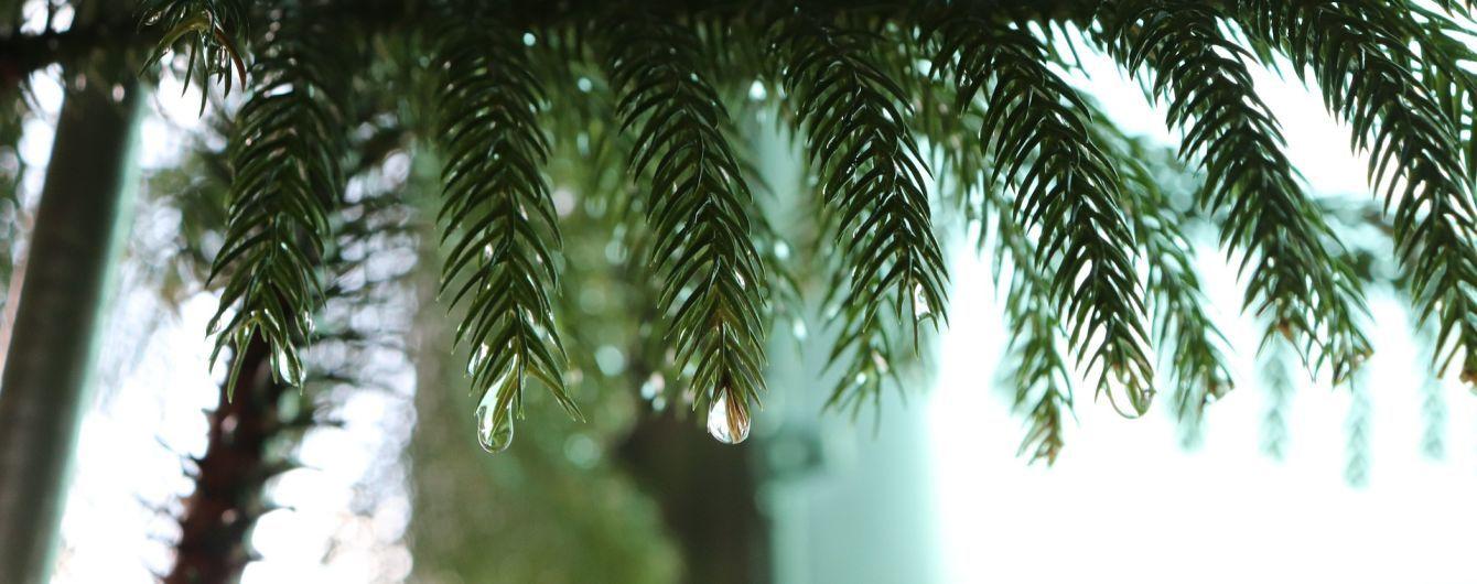 Погода на середу: дощі продовжують заливати країну