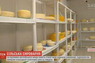 В селе на Буковине общую баню превратили в сыроварню с европейскими технологиями