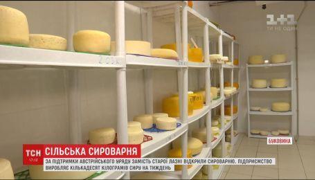 За підтримки австрійського уряду на Буковині відкрили сироварню