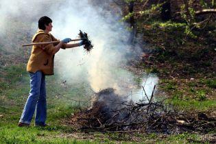 В Украине хотят в десятки раз повысить штрафы за сжигание листьев