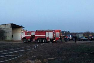 На Київщині у пожежі загинуло четверо коней
