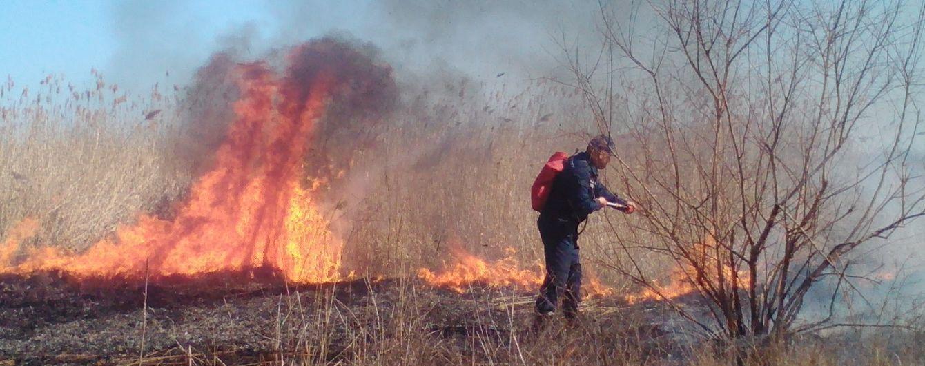 На Миколаївщині палає очерет, місцеві підозрюють у підпалі рибалок-браконьєрів