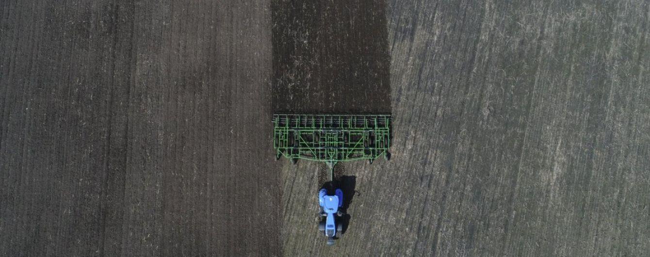 В Одесской области засуха уничтожила половину урожая озимых зерновых - фермеры