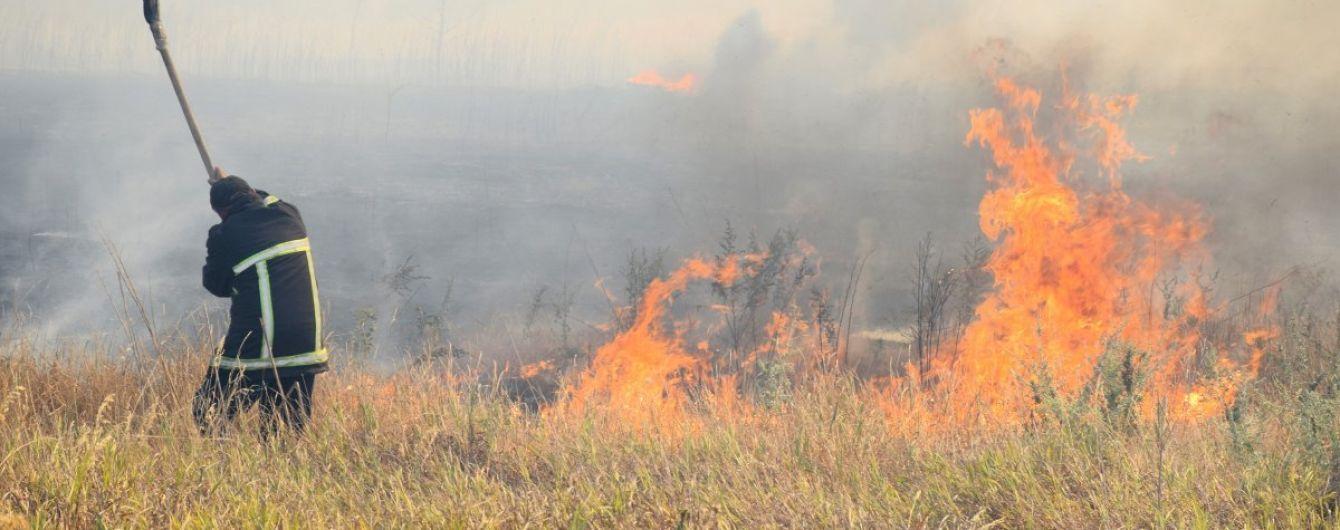 На Херсонщине в течение пяти дней тушили масштабный лесной пожар