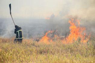Супрун рассказала об опасности и вреде сожжения сухостоя