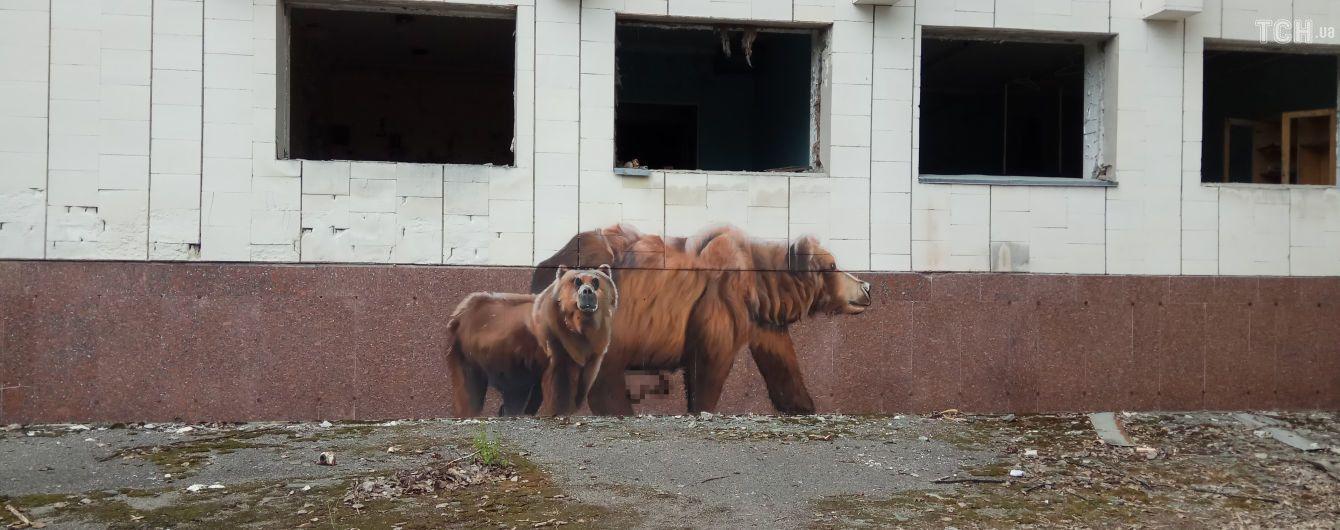 На стене Чернобыльской АЭС нарисуют почти 60-метровый мурал