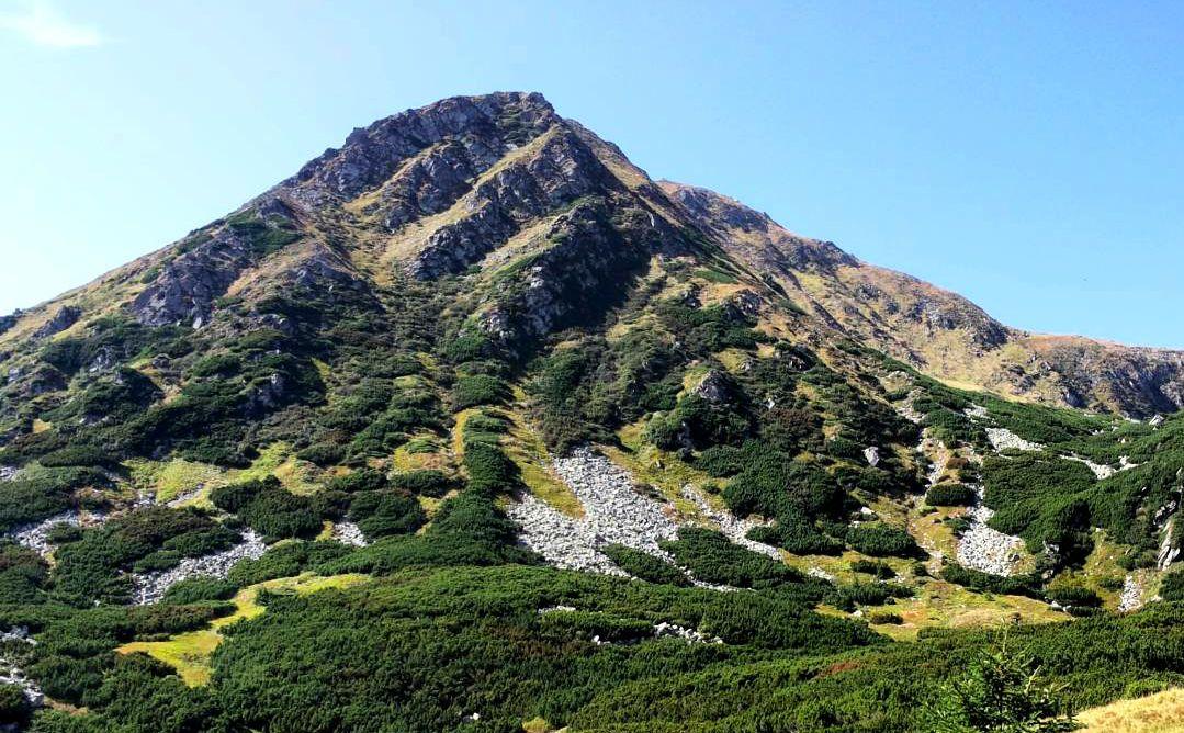 Гора Гутин Томнатик, Карпати