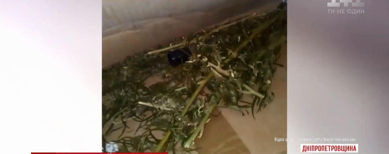 Дети нашли в спортзале школы на Днепропетровщине тайник конопли, которую педагоги немедленно сожгли