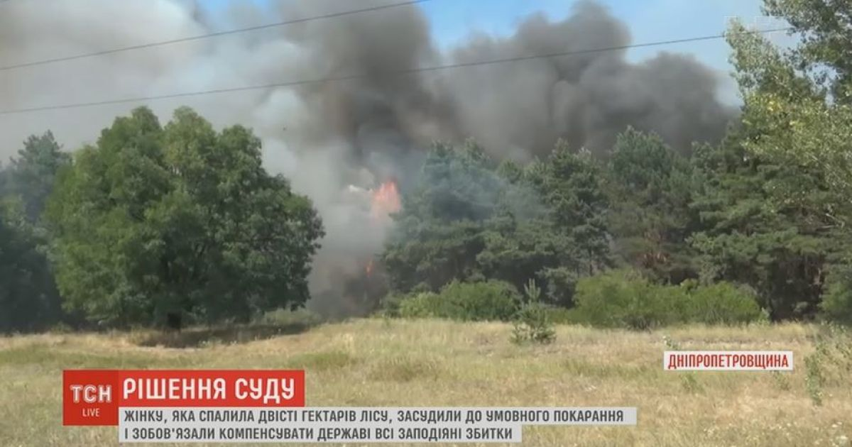 На Дніпропетровщині бабці присудили 220 тисяч штрафу за випадково спалені 200 га лісу