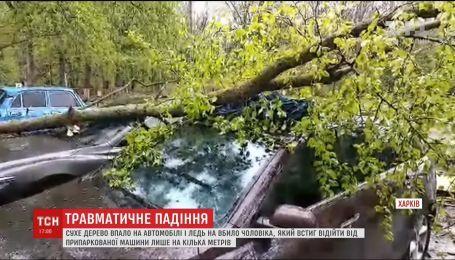 В Харькове на автомобили упало дерево и чуть не убило человека