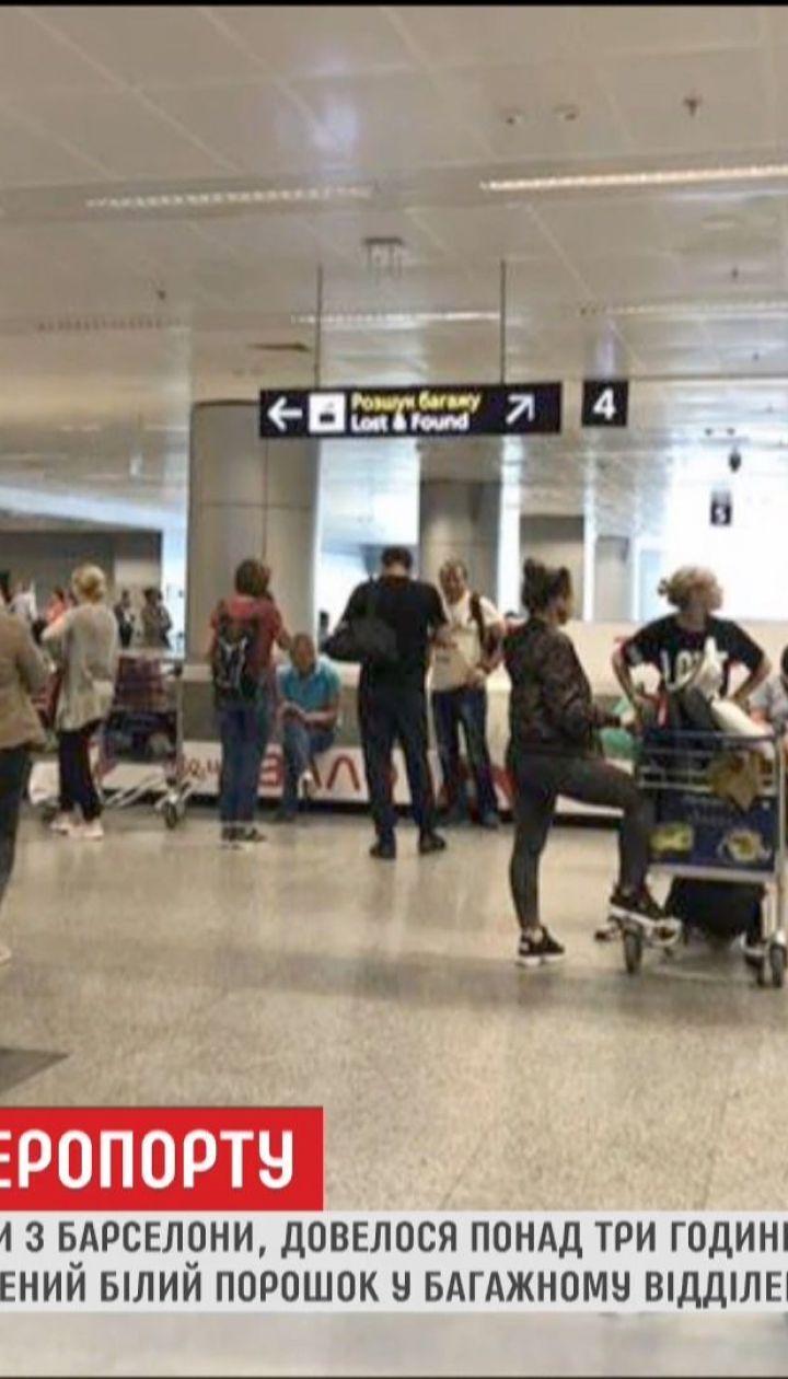 В аеропорту Бориспіль правоохоронці переплутали пральний порошок з наркотиками