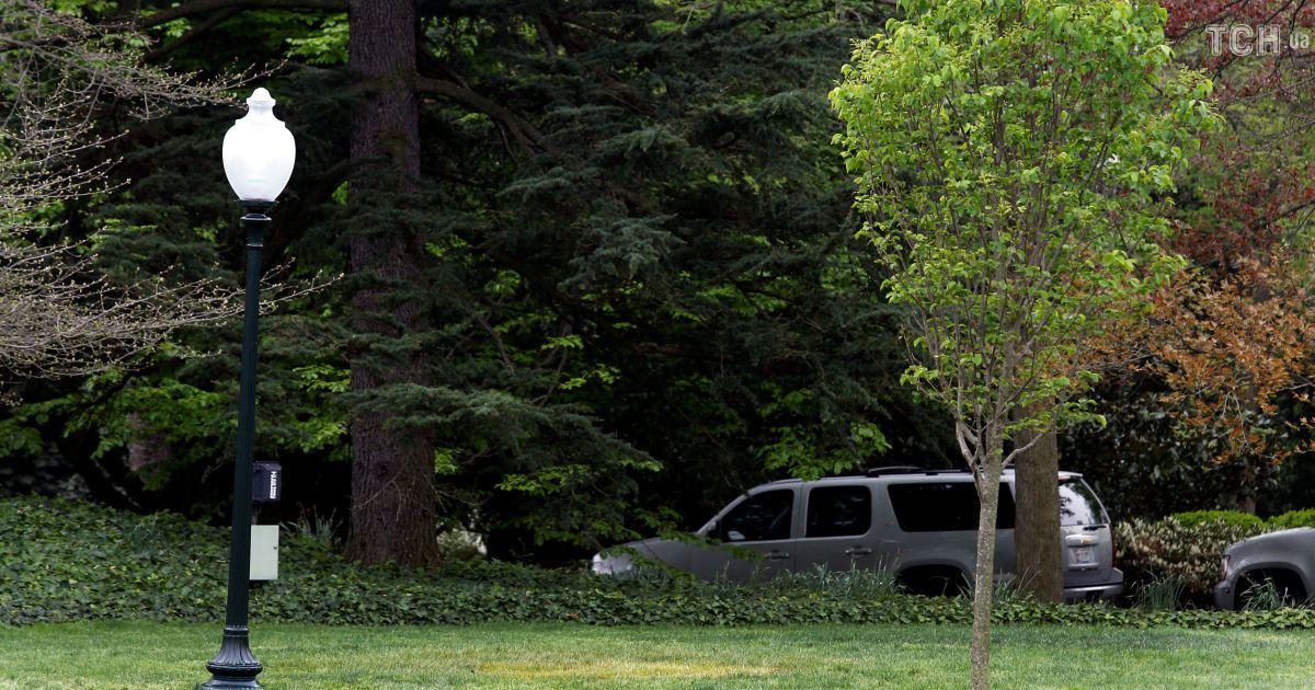 С лужайки у Белого дома в Вашингтоне исчез дуб, который посадили Макрон и Трамп.