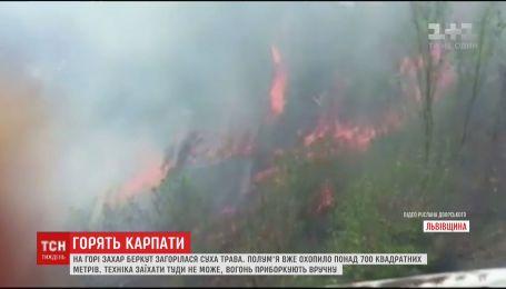 В Карпатах горит более 700 квадратных метров сухой травы