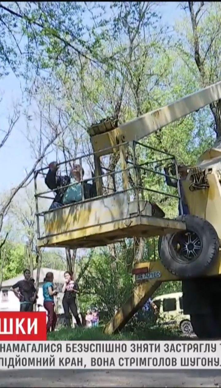 На Днепропетровщине горожане целый день спасали кошку, которая вскарабкалась на 20-метровое дерево