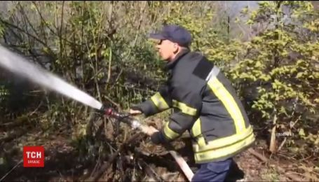 В Киеве на Трухановом острове загорелось пять гектаров травы и деревьев