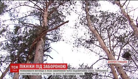Из-за угрозы пожаров на Днепропетровщине запретили разводить костры в лесах