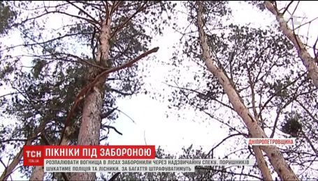 Через загрозу пожеж на Дніпропетровщині заборонили розводити багаття у лісах